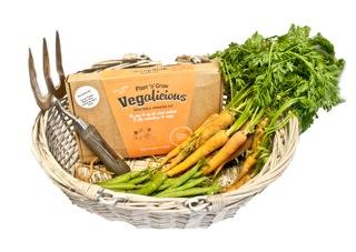 veg starter 2 (2)