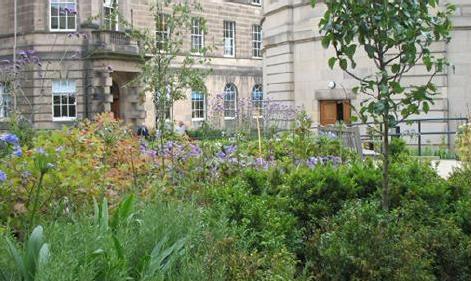 archivists-garden