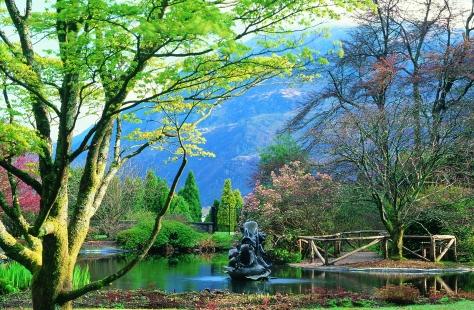 Dolphin Pond, Benmore Botanic Garden