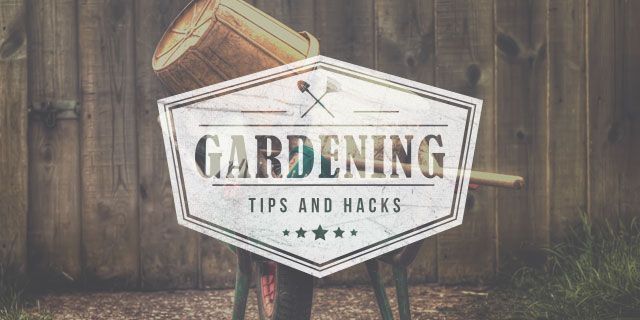 30 Great Gardening Hacks and a competition to WIN a pair of Dickies Gardening Trousers