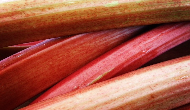 Homemade Rhubarb Tea