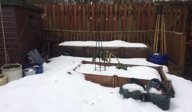 Wordless Wednesday – STILL under snow!