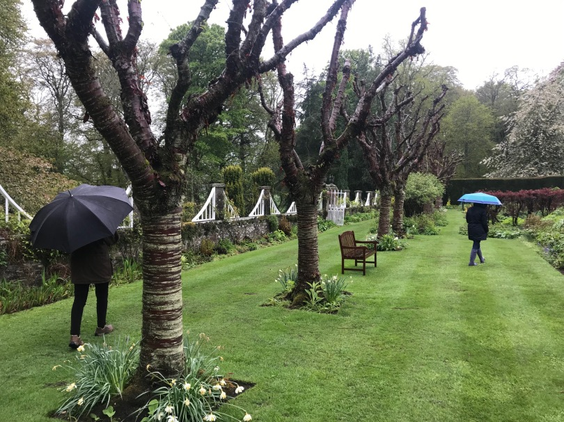Pitmuies Gardens