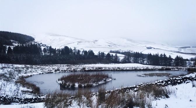Wordless Wednesday – Snow Day